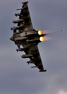 RAF Typhoon. Could not get enough of this aircraft at a air show in Eastbourne. The sound it makes is truly terrifying.