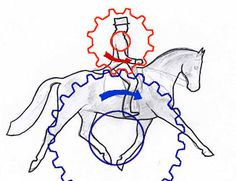 Biomechanics is the study of the functioning of the body in movement using mechanical principles. It is highly relevant to riding because here we have two