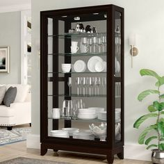 Darby Home Co Nancy Lighted Curio Cabinet Floating Glass Shelves, Glass Shelves Kitchen, Glass Cabinet Doors, Cabinet Decor, Glass Curio Cabinets, China Cabinet Display, China Cabinets, Glass Doors, Kitchen Cabinets