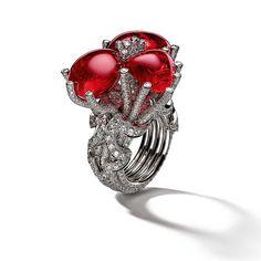 Giampiero Bodino Tesori Del Mare ring in white gold and diamonds, set with three red spinels.
