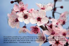 """It would be pointless for a plum blossom to try to remake itself as a cherry blossom, no matter how deeply the plum yearns to do so. The plum is happiest when it blooms as itself in full glory. How much of the color and wonder of life would be lost if it weren't for our differences."" ~ President Daisaku Ikeda www.ikedaquotes.org"