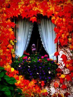 Janela adornada para o outono.