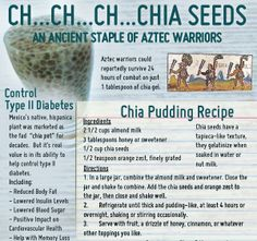 Chia seeds have been used by mankind for their health benefits for centuries. Today people all around the world are enjoying the nutrition benefits of chia seed Chia Benefits, Health Benefits, Health Tips, Chi Seeds Benefits, Health Facts, Health Articles, Get Healthy, Healthy Recipes, Healthy Eating