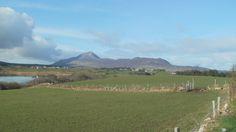 Urlaub machen in Connemara - B & B  - Gaestezimmer -  moira.eccuill@gmail.com Irish Cottage, Connemara, Mountains, Nature, Travel, Ireland, Voyage, Trips, Viajes