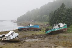 bay of fundy maine coast | many sea paddlers steer clear of the bay of fundy