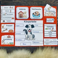 Package Lapbook & index cards to the dog - teaching material in the subject of teaching - Sachunterricht in der Grundschule - Hunde Fall Preschool Activities, Apple Activities, Free Preschool, Life Is Too Short Quotes, Life Quotes, How To Attract Customers, Index Cards, Play To Learn, Teaching Materials