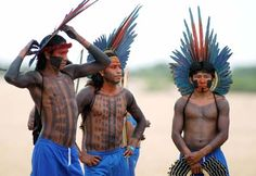 Tribes from around the world | Today, there are around 650,000 Indians in Brazil in over 200 tribes ...