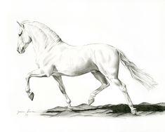 Horse Drawings, Art Drawings Sketches, Easy Drawings, Animal Drawings, Drawing Art, Drawing Techniques Pencil, Colored Pencil Techniques, Horse Drawing Tutorial, Horse Sketch