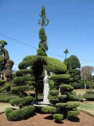 Pearl Fryar's Topiary Garden in Bishopville, SC.  Topiary artist Pearl Fryar has turned the grounds of his Bishopville home into a three-acre topiary garden. Fryar is world renowned for his stunning artwork.
