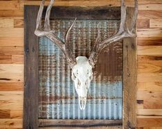 There are many rustic wall decor ideas that can make your home truly unique. Find and save ideas about Rustic wall decor in this article. See more ideas about Farmhouse wall decor, Dining room wall decor and Hobby lobby decor. Deer Hunting Decor, Deer Decor, Decorating With Deer Antlers, Deer Mount Decor, Antler Wall Decor, Deer Camp, Deer Hunting Blinds, Pheasant Hunting, Farmhouse Wall Decor