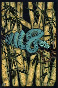 Green Tree Python by Rachel Newling. Hand-coloured linocut on handmade Japanese paper