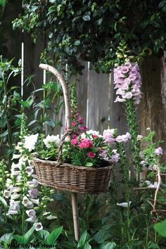 We planted flowers in a planter and used it for a pretty look in the garden. When they start trailing down over the basket it'll be charming................