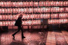 Mes séjours à Tokyo ont souvent été accompagnés de pluie. La plupart des gens sortent avec des parapluies transparents. Je voulais jouer avec cet objet du quotidien et la nuit ma paru être parfaite pour shooter.  Bertrand Vacarisas Tokyo - LEICA Q  2017 @bertrandvacarisas #japan #tokyo #Leicaimages #leica_world #professionnalphotographer #discover #createyourhipe #createyourhappy #photography #leicaimages #chinagram #tokyo_grapher #tokyo_ig #instago #colors_of_day #colors_up…