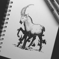 """7,404 Likes, 36 Comments - Miranda Zimmerman (@faunwood) on Instagram: """"「.o18」Alpine Ibex // sold This one seems to have stepped in something.... I like where this one…"""""""