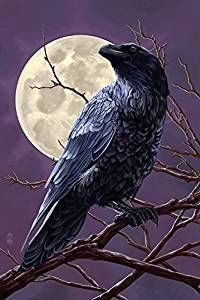 Image result for raven and the moon