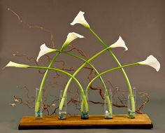 Parlor show design from the Victoria Floral Artists Guild June 2015 meeting