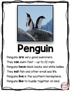 All about penguins worksheets Kindergarten Lessons, Kindergarten Writing, Teaching Writing, Writing Activities, Math Lessons, Teaching Tips, Informative Writing Kindergarten, Animal Activities, Writing Worksheets