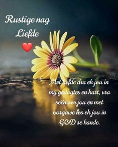 Afrikaanse Quotes, Goeie Nag, Good Night Quotes, Deep Thoughts, Beautiful Landscapes, Lilac, Cottage, Sleep Tight, Messages