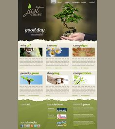 Just Cause, NGO website Concept New Press, Non Profit, Competition, Campaign, Success, Social Media, Concept, Website, Day