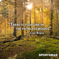 There is pleasure in the pathless woods.