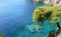 Familienurlaub in Kroatien - ein eigenes Strandapartment in Istrien! 4, 5 oder 8 Tage ab 99 €   Urlaubsheld.de