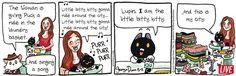 Breaking Cat News by Georgia Dunn for Aug 11, 2017 | Read Comic Strips at GoComics.com