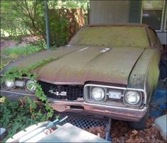 Old cars girls oldsmobile 442 Ideas Ford Mustang, Cool Car Pictures, Car Pics, Automobile, Car Barn, Rusty Cars, Oldsmobile Cutlass, Car Storage, Abandoned Cars