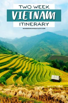 2 Weeks in Vietnam: The Perfect 2-Week Vietnam Itinerary I Vietnam travel tips I things to do in Vietnam I Asia travel I travel tips for Asia I what to do in Vietnam I where to go in Vietnam I places to go in Vietnam I South East Asia travel I Vietnam tourism I Vietnam attractions I itinerary for Vietnam I Vietnam travel I visit Vietnam I things to do in Hanoi I things to do in Hoi An I Vietnam highlights I #Hanoi #Vietnam #traveltips #travelguide –By Wandering Wheatleys via @wanderingwheatleys Vietnam Travel Guide, Asia Travel, Solo Travel, Vietnam Tourism, Hanoi Vietnam, Beach Travel, Luxury Travel, Travel Guides, Travel Tips