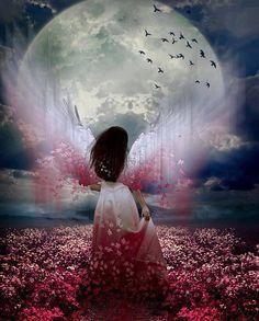 Full pink flower Moon Fairy - Beautiful