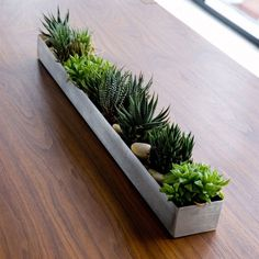 "Fruit Trough - 30""W x 3""D x 2""H Originally designed as an accessory to store and display fruit, this versatile, watertight vessel also works well as a simple indoor/outdoor planter for succulents or h"