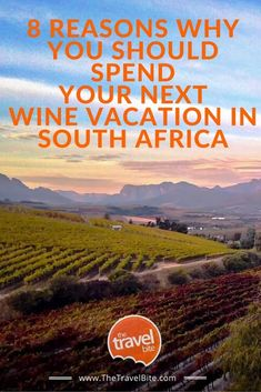 8 Reasons Why You Should Spend Your Next Wine Vacation In South Africa Beautiful Places To Visit, Cool Places To Visit, Amazing Places, Travel Couple, Family Travel, Travel Guides, Travel Tips, Travel Advice, Chobe National Park