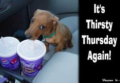 Thirsty Thursday Cartoons | Thirsty Thursday Picture
