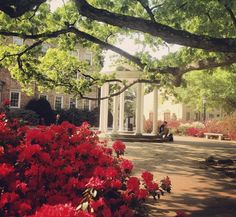 A walk around campus isn't complete without a stop at the Old Well. #UNCAlumni #TARgram alumni.unc.edu