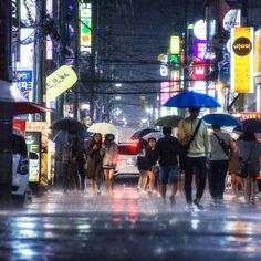 Umbrellas in Busan Rain_.jpg