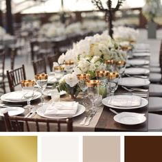 Gold, Ivory and Dark Brown Color Palette