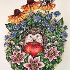 "Колючий милаха в новой раскраске от Марии Тролле ""Skymnings Timman"" #blomstermandala #blomstermandalamålarbok #målarbok #mariatrolle #wildflowers #coloring #adultcoloring #coloringbook #coloringforadults #раскраска #раскраскаантистресс #раскраскадлявзрослых #раскраскаантистресс #大人の塗り絵 #塗り絵 #おとなの塗り絵 #コロリアージュ #野の花の塗り絵ブック #マリアトロッレ #컬러링북 #컬러링 #artecomoterapia #boracolorirtop #colorindolivrostop #beautifulcoloring #skymningstimman #vivisökerenvänmålarbok #сумеречныйсад #мариятролле #droomreis"