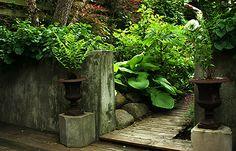 Rick Bayless's Urban Edible Garden