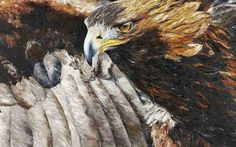 Eagle, 100x150 cm, oil on canvas