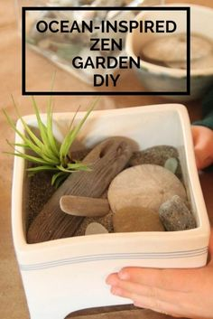 Have you collected shells, sea glass, and rocks and then kept them around the house waiting to use them? If so, all you need are a few other simple materials like driftwood and sand to create this beautiful air plant masterpiece. Read on as eBay shows you how to create a beautiful DIY ocean-inspired Zen garden.