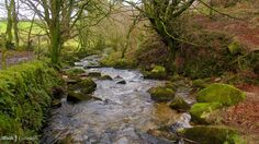 One of the moorland streams feeding the River Camel, near Advent Church, Cornwall Camel Valley, Cornwall, Rivers, Mother Nature, Pools, Advent, Waterfall, Places, Travel