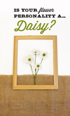 Are you a Daisy flower? You are probably all smiles because you easily spread joy like a Daisy. You tend to be laid back, passionate about social rights, and have lots of friends.Share with us your flower personality for a chance to win $100 VISA gift card.