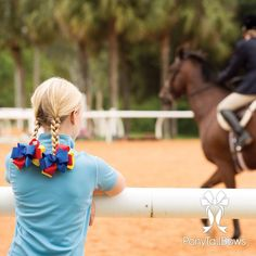 Grand Champion Shortie Horse Show Bows  #equestrian #hunterjumper