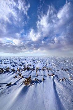 """https://flic.kr/p/qEqLDr 