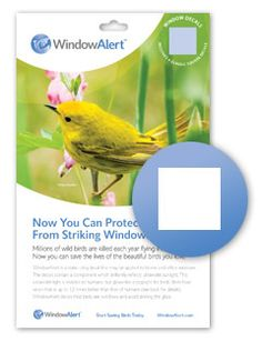 Window Alert Keep Wild Birds Safe From Hitting Your Windowsor - Window stickers to deter birds