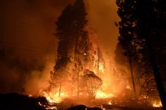 California wildfires – in pictures | US news | The Guardian San Diego County Sheriff, San Bernardino National Forest, Forest Falls, Fresno County, Weather Storm, Fire Image, National Weather, California Wildfires, Climate Change Effects