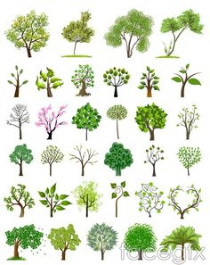 Tree illustration vector pictures 24 New ideas Art And Illustration, Art Illustrations, Vector Trees, Leaves Vector, Free Vector Graphics, Vector Art, Vector Stock, Theme Nature, Trendy Tree