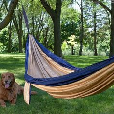 Adding a hanging hammock bed or chair to your garden design creates an interesting and attractive centerpiece for summer backyard ideas