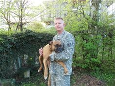 """Face of Defense: 'Man's Best Friend' Inspires Blood Drive - """"Holly-Eva, a five-year-old boxer and her bad knees motivated more than 100 people to donate blood at a drive held last month at Wiesbaden Army Airfield, Germany."""""""