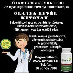 AZ OLAJFA A GYÓGYTÓ SZENTEK FÁJA - leleplezo.lapunk.hu Influenza, Granada, Ecards, Memes, Grenada, E Cards, Meme