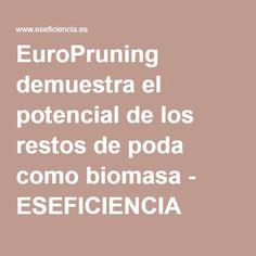 EuroPruning demuestra el potencial de los restos de poda como biomasa - ESEFICIENCIA